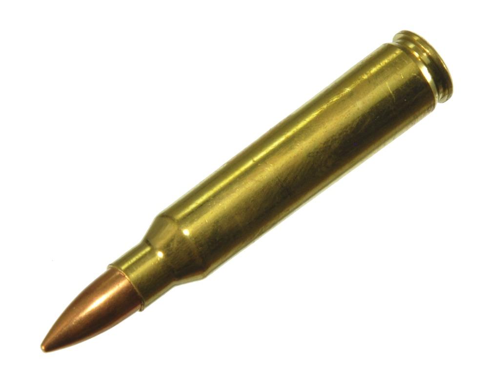 ダミーカート ライフル弾  223 Remington  プライマー付実弾レプリカ